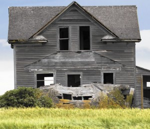Old House in Field Details